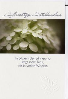 Karte Trauer Motiv Spruch Gigko Blätter