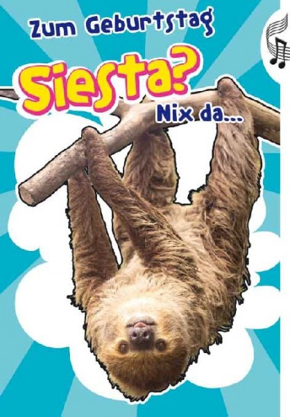 Geburtstagskarte Motiv Faultier - Zum Geburtstag Siesta...Nixx da - Soundkarte Flashlight