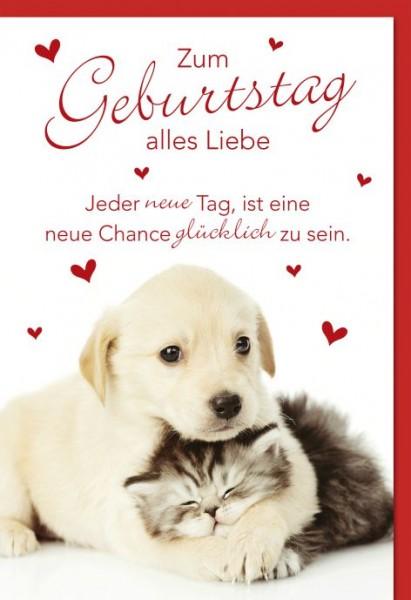 Karte Geburtstag Motiv Hund umarmt Kätzchen