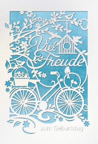 Karte Geburtstag Motiv Fahrrad Vogelhaus Äste