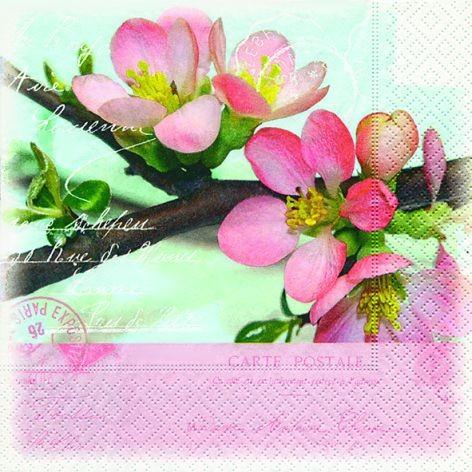 Serviette 33x33cm 3-lagig Blossom greetings