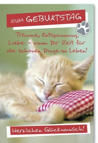 Karte Geburtstag Motiv Träumende Katze